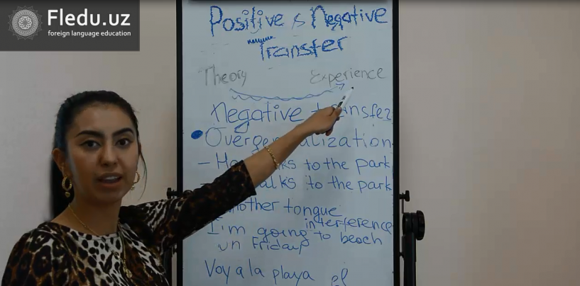 Positive and Negative Transfer