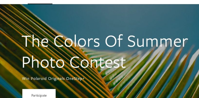 THE COLORS OF SUMMER PHOTO CONTEST