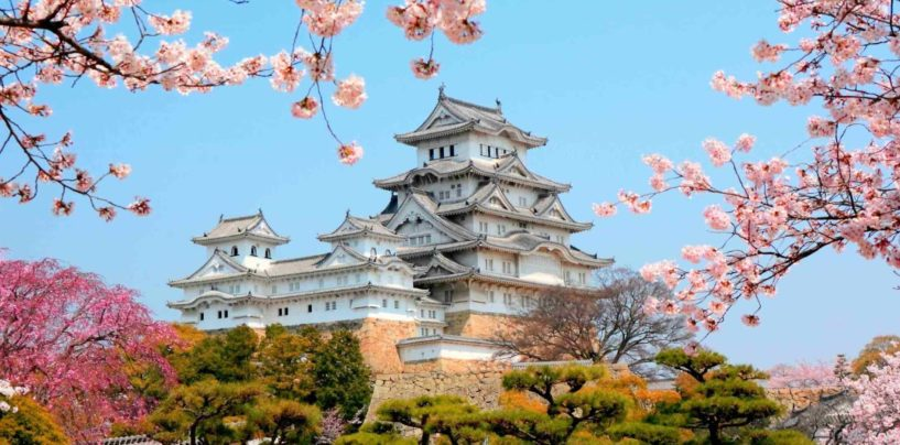 FELLOWSHIP ANNOUNCEMENT  THE MATSUMAE INTERNATIONAL FOUNDATION
